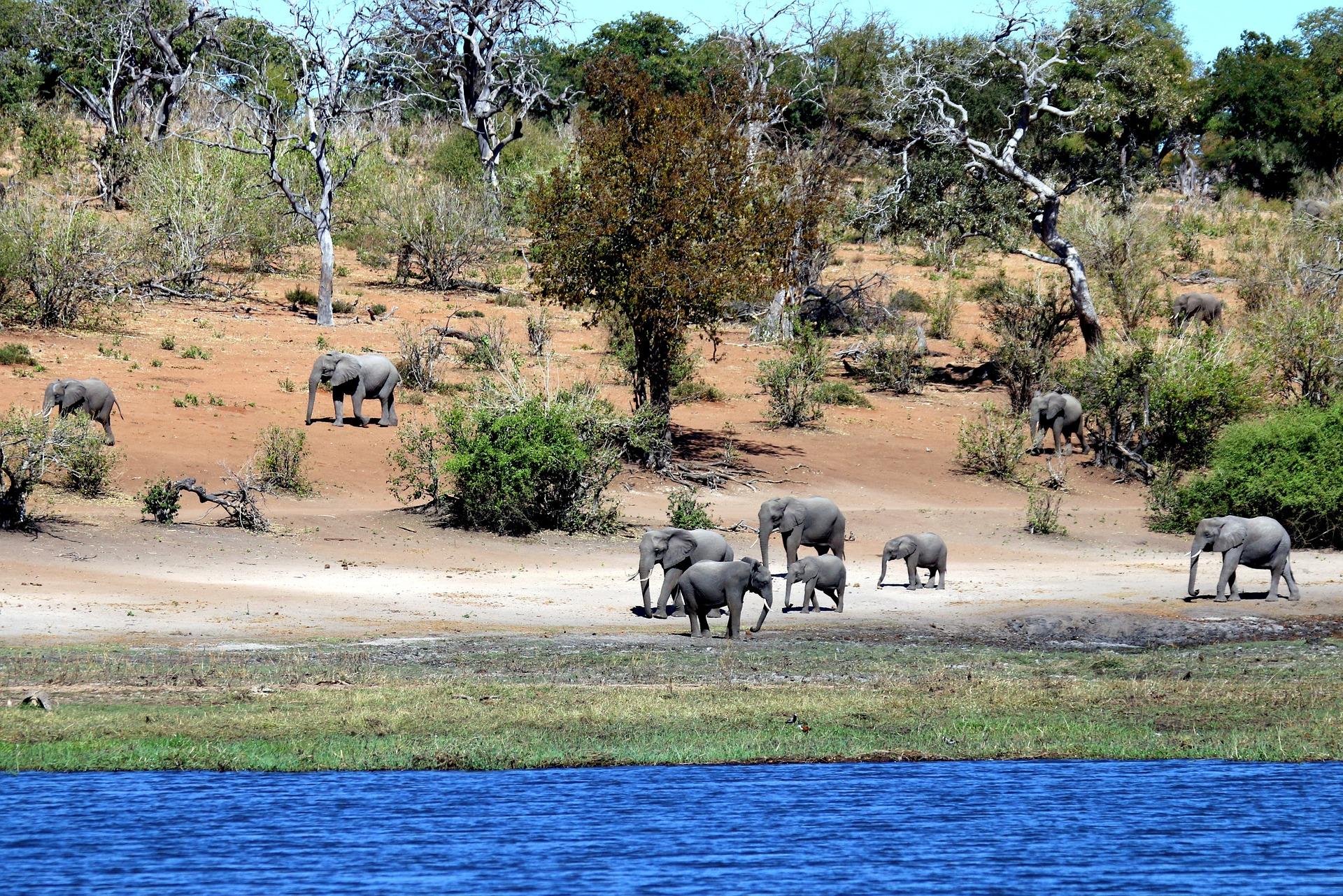 Se trouver un hébergement correspondant à son type de voyage en Afrique